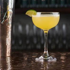 Gimlet | The Cocktail Porject