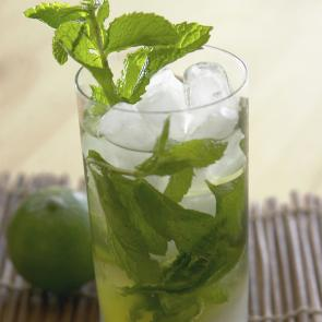 Classic Mojito | The Cocktail Porject