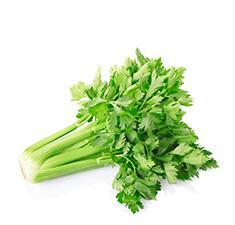 Celery - Drink Recipe Ingredient
