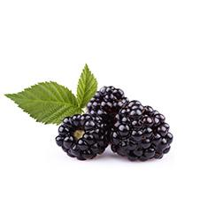 Blackberries - Drink Recipe Ingredient