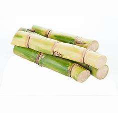 Sugar Cane - Drink Recipe Ingredient