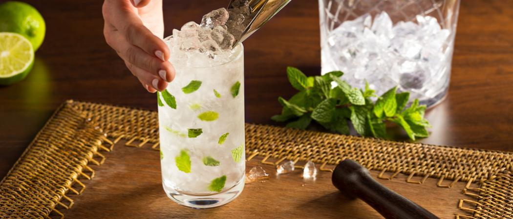 Coconut Mojito | The Cocktail Project