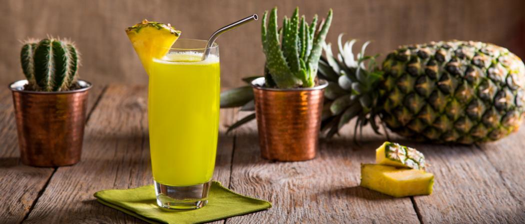 Midori® Cactus Juice | The Cocktail Project