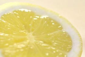 Play Video: The Secrets of Citrus